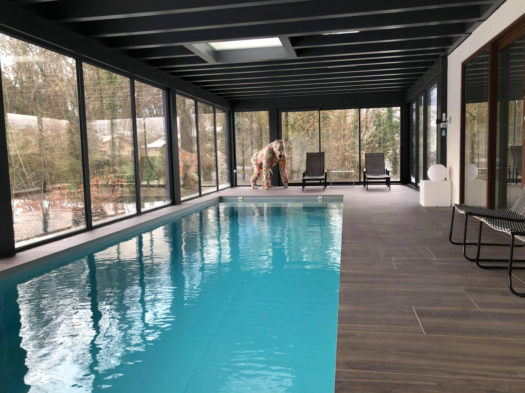 leader piscine rhone alpes
